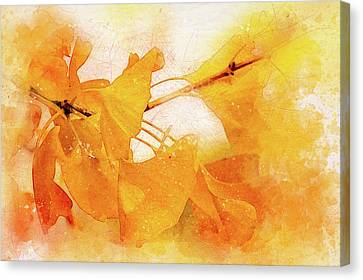 Ginkgo Abstraction Canvas Print