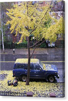 Canvas Print featuring the photograph Ginkgo In Fall by Erik Falkensteen