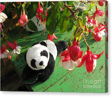 Canvas Print featuring the photograph Ginny Under The Red And White Fuchsia by Ausra Huntington nee Paulauskaite