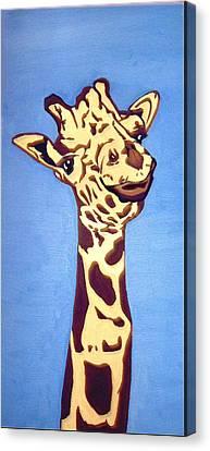Giraffe Canvas Print by Darren Stein