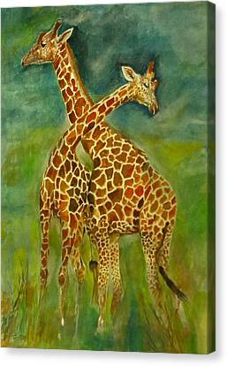 Lovely Giraffe . Canvas Print