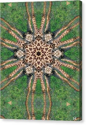 Giraffe Mandala II Canvas Print by Maria Watt