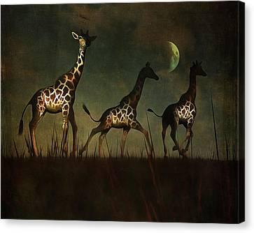 Moon Canvas Print - Giraffes Fleeing by Jan Keteleer