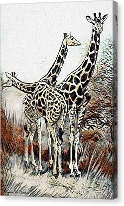 Canvas Print featuring the digital art Giraffes by Pennie McCracken
