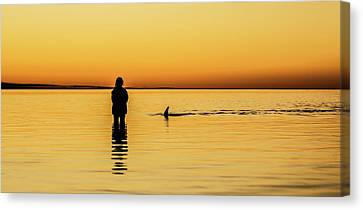 Girl And Dolphin - Monkey Mia, Western Australia Canvas Print by Gary Wright