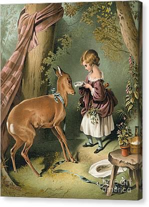 Girl Feeding A Deer Canvas Print