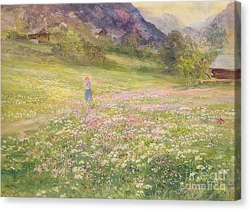 Girl In A Field Of Poppies Canvas Print by John MacWhirter