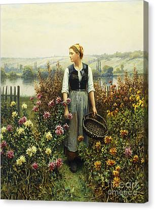 Picking Flowers Canvas Print - Girl With A Basket In A Garden by Daniel Ridgway Knight