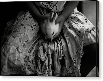 Girl With Bunny Canvas Print by Werner Hammerstingl