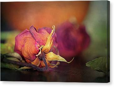 Give Me The Roses While I Live Canvas Print by Maria Angelica Maira