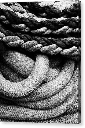 Give Them Some Rope Canvas Print by Skip Hunt