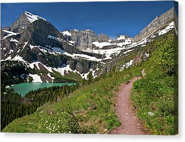 Canvas Print featuring the photograph Glacier Backcountry Trail by Gary Lengyel