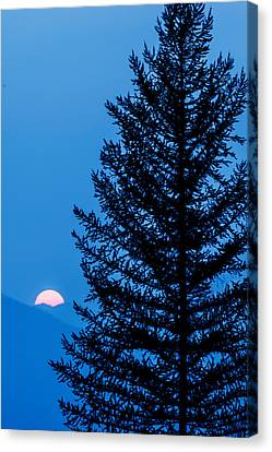 Canvas Print featuring the photograph Glacier National Park Sunset Blue by Kevin Blackburn