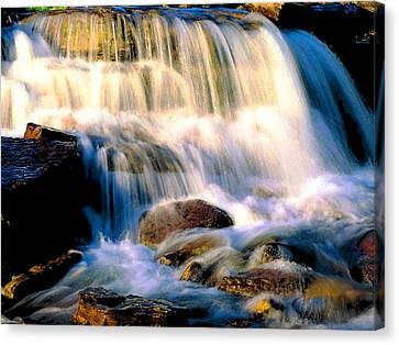 Glacier National Park Waterfall Canvas Print by Vicky Brago-Mitchell