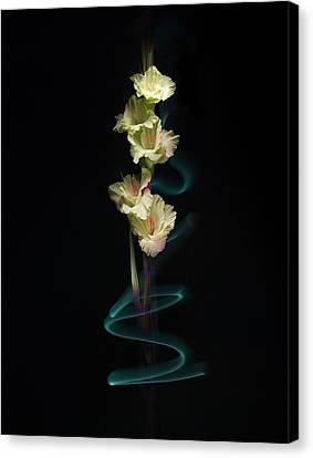 Canvas Print featuring the photograph Gladiolus Variation#02 by Richard Wiggins