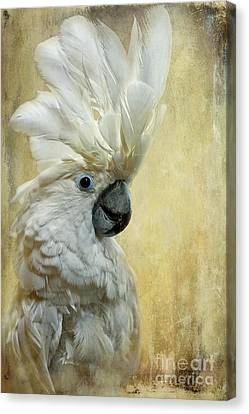 White Birds Canvas Print - Glamour Girl by Lois Bryan