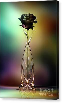 Glasblower's Rose Canvas Print