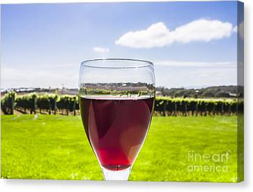 Glass Of Red Merlot Wine. Wineries And Vineyards Canvas Print by Jorgo Photography - Wall Art Gallery