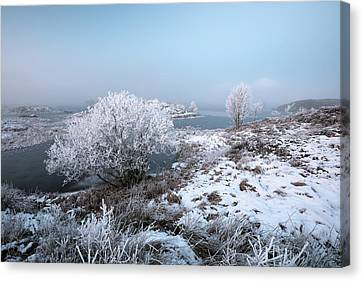 Canvas Print featuring the photograph Rannoch Moor Winter Mist by Grant Glendinning
