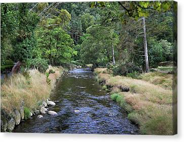 Canvas Print featuring the photograph Glendasan River. by Terence Davis