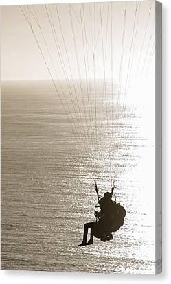 Gliding Canvas Print by Susan  McMenamin