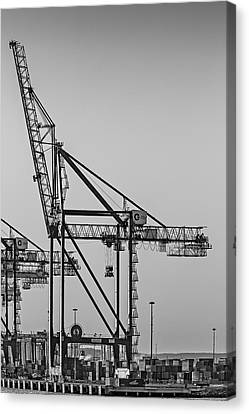Global Containers Terminal Cargo Freight Cranes Bw Canvas Print by Susan Candelario