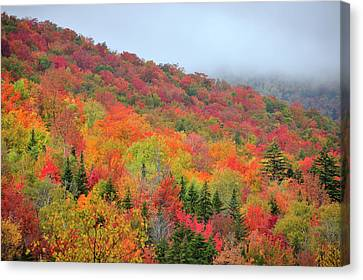 New England Autumn Canvas Print - Glorious by Betty LaRue