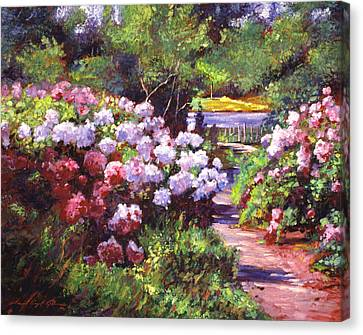 Glorious Blooms Canvas Print by David Lloyd Glover