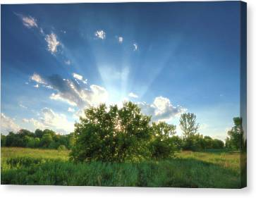 Canvas Print featuring the photograph Glorious Sky - A by Anthony Rego