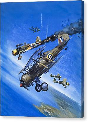 Gloster Gladiator Canvas Print by Wilf Hardy