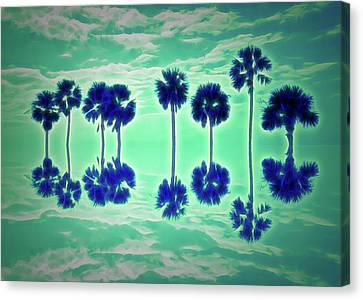 Skies Canvas Print - Glow In The Dark Palm Tree Reflection by Aimee L Maher Photography and Art Visit ALMGallerydotcom