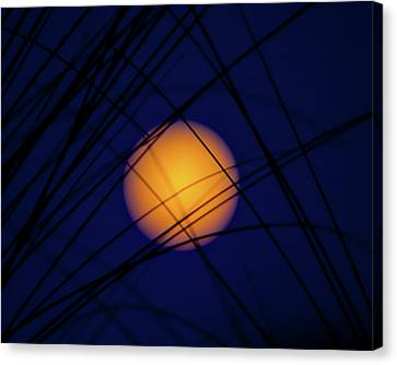 Glow Of The Super Moon Canvas Print by Mark Andrew Thomas