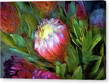 Glowing Bromeliad Bud Canvas Print by Casey Heisler