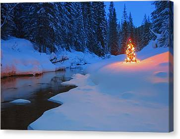 Glowing Christmas Tree By Mountain Canvas Print by Carson Ganci