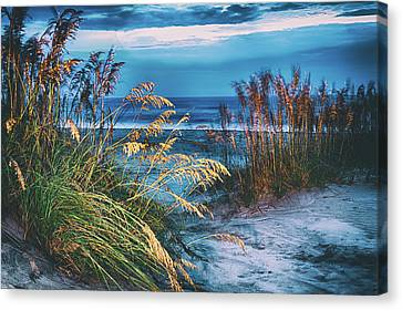 Canvas Print featuring the photograph Glowing Dunes Before Sunrise On The Outer Banks by Dan Carmichael