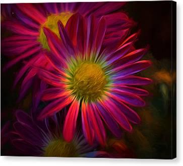 Glowing Eye Of Flower Canvas Print by Lilia D