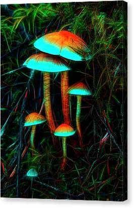 Canvas Print featuring the photograph Glowing Mushrooms by Yulia Kazansky