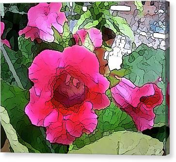 Gloxinia Canvas Print