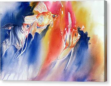 Go Fish Canvas Print by Tara Moorman