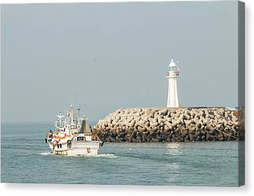 Go Fishing Canvas Print