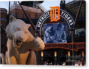 Detroit Tigers Canvas Print - Go Get Um Tiger by Dawn Williams