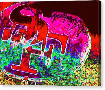 Go Niners 20130115 Canvas Print by Wingsdomain Art and Photography