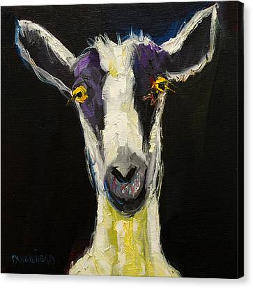 Farm Animal Canvas Print - Goat Gloat by Diane Whitehead