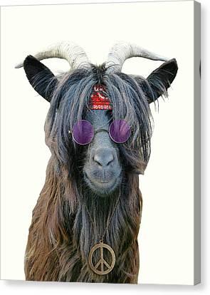 Goat Hippie Red Bandana Americana Canvas Print by Madame Memento