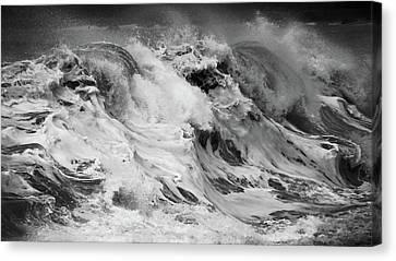 Goat Rock Beach Canvas Print