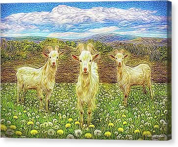Goats In The Dandelions Canvas Print