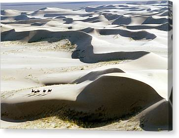 Gobi Desert Canvas Print by Ria Novosti