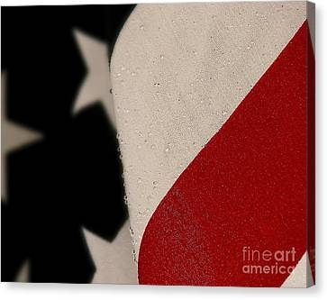 God Bless The U. S. A. Canvas Print
