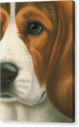 Goggie Beagle Canvas Print by Karen Coombes