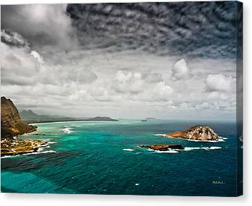 Going Coastal Canvas Print by Mitch Shindelbower